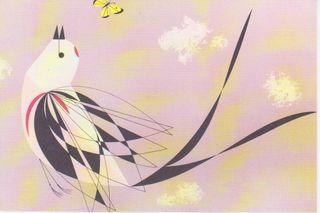 Scissors-tail flycatcher