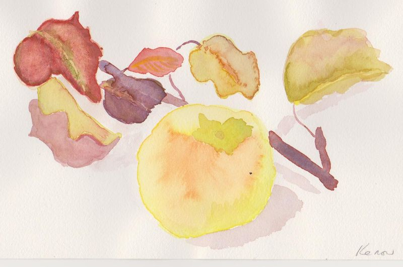 Persimmon and pear leaves 1009