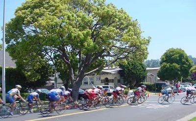 Bike_racers_6_cut_1